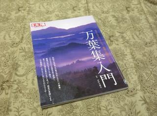 IMG_4908a.jpg